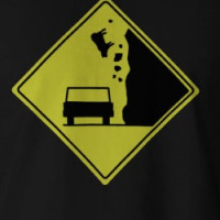 Beware of Falling Cows T-shirt