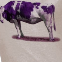 PURPLE AND WHITE COW T SHIRT T-shirt
